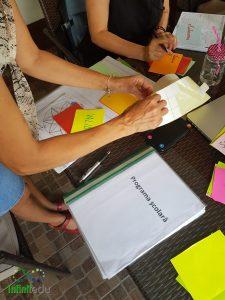 Planificări și proiectări