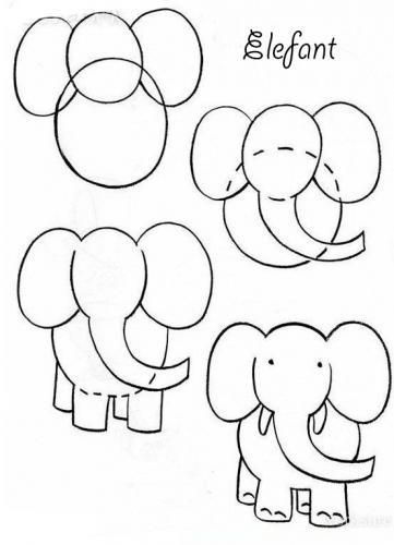 medie-elefant_9oei