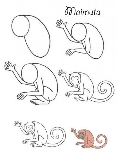 mediu-maimuta